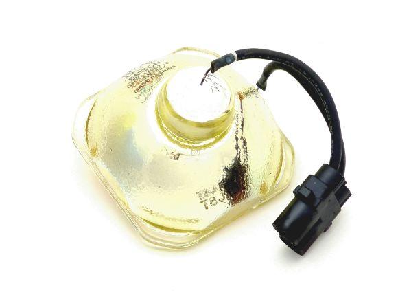 EPSON原廠ELPLP49/ELPLP54投影機燈泡(裸燈)(ELPLP49L)