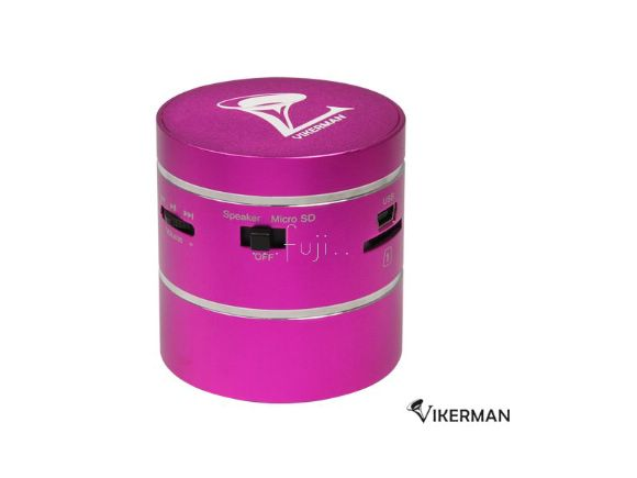 Vikerman�x�s MP3 Player/Speaker ���ݰg�A�ϩʭ��T(���)(TK-SK11)