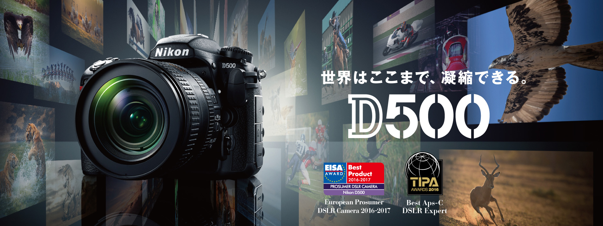 http://imgsv.nikon-image.com/products/slr/lineup/d500/img/index/main_01_award.jpg