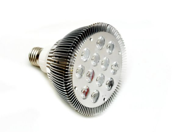 12W白光High-power  LED PAR38 DC直流燈(8-30v)(L-PAR38DC-12WW)