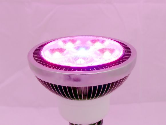 高功率High-power  LED Plant Grow Lights 10W植物燈(5R:1B)(LLED-SBPAR30-10W-G)