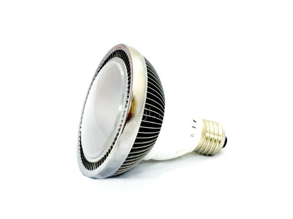 1200 流明高亮度暖白光LED DC直流燈(8-30v)(L-PAR30DC-12WW)